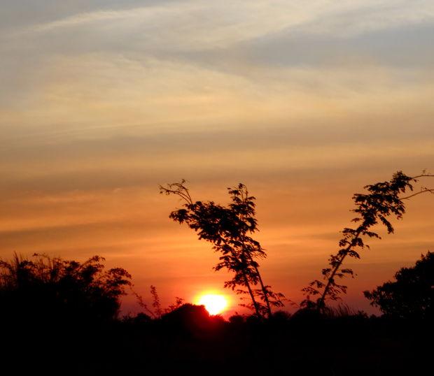 sunrise-620